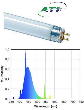 ATI Blue Plus + T5 Bulb, 24