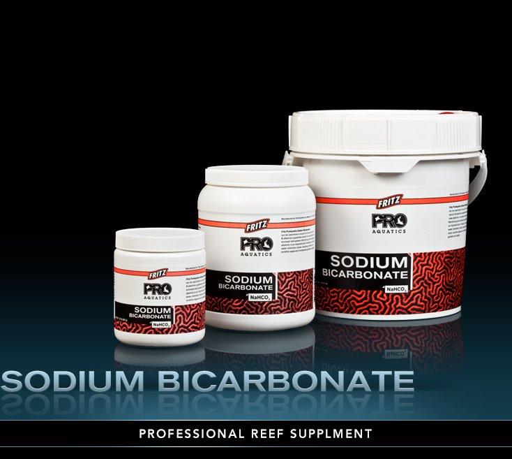Fritz PRO Bulk Sodium Bicarbonate, 1/2 gal. by Fritz]