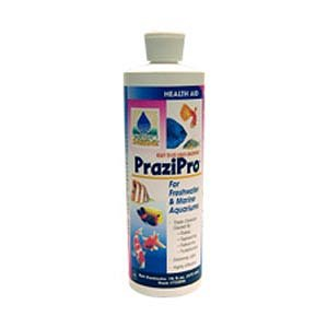 Hikari Prazi Pro Parasite Treatment, 4 oz. by Hikari]