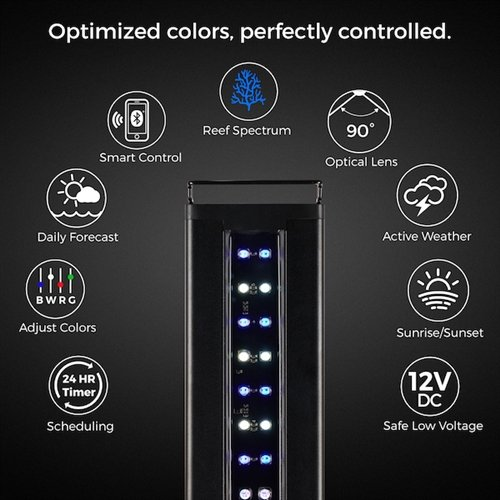 Current USA Orbit Marine IC LED System with Bluetooth Controller 24