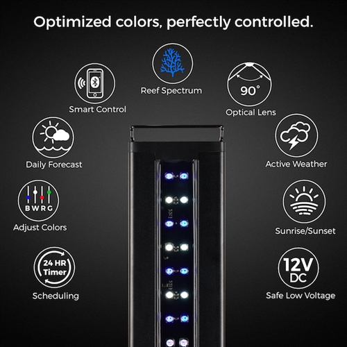 Current USA Orbit Marine IC LED System with Bluetooth Controller 48