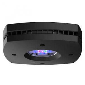 AI Prime 16HD Reef LED Module - Black - AquaIllumination