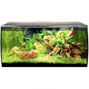 Fluval Flex 32 Gal. Aquarium Kit - Black