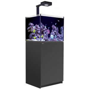 Red Sea Reefer 170 Deluxe, 43 Gal. With 1X ReefLED 90 - Black