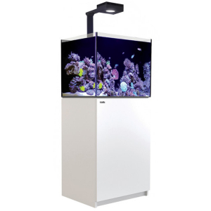 Red Sea Reefer 170 Deluxe, 43 Gal. With 1X ReefLED 90 - White