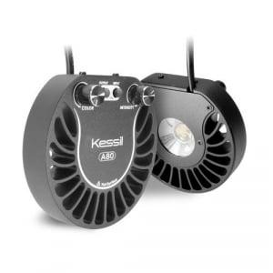 Kessil A80 Tuna Blue LED