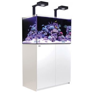 Red Sea Reefer 250 Deluxe, 65 Gal. With 2X ReefLED 90 - White