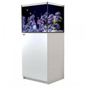 Red Sea Reefer 170, 34 Gal. Aquarium Kit, White