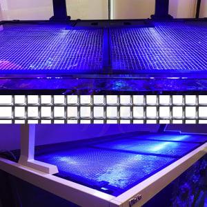 "Red Sea Tank Net Screen 24"" x 24""  (incl. 1 Universal Cut Out)"