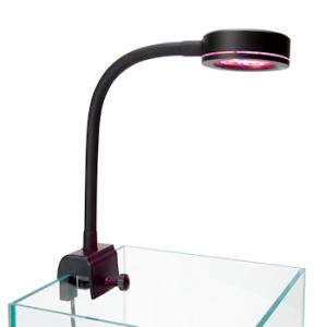 Pico Refugium LED - ReefBreeders