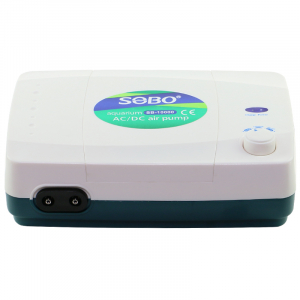 Dual Outlet Air Pump with Battery Backup