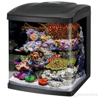 Coralife BioCube LED 16 Gallon by Coralife]