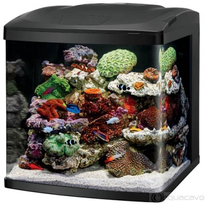 Coralife BioCube LED 32 Gallon by Coralife]