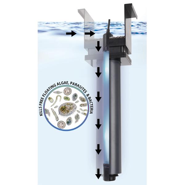 Auqashield UV 11W MidSize - Innovative Marine by Innovative Marine]