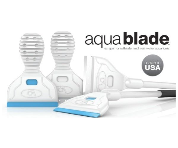 Continuum AquaBlade M Replacement Metal Blade, 30 Pack by Continuum]