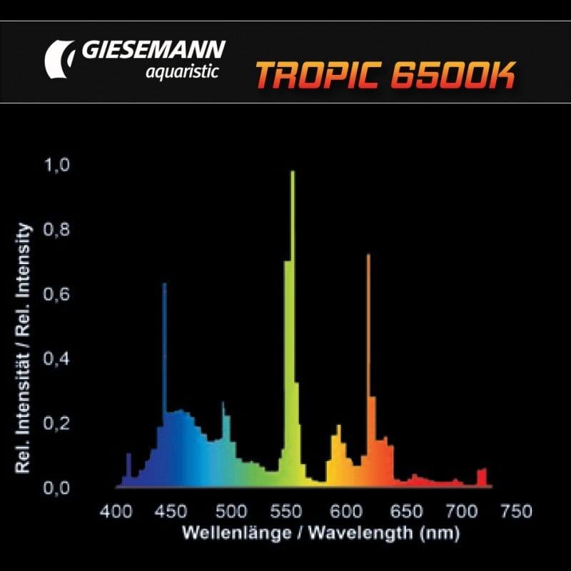 Giesemann Tropic T5 Bulbs by Giesemann]