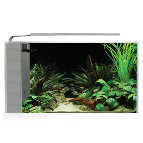 Fluval SPEC V Desktop Aquarium Kit - White - 5 gal. by Hagen]