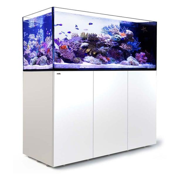 Red Sea Peninsula P650, 175 Gal. Aquarium Kit, White by Red Sea]