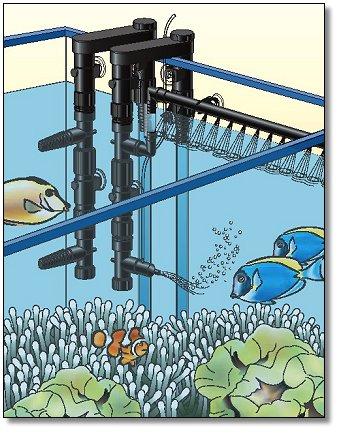 CustomFlo Water System Complete Kit by Pentair Aquatics by Pentair Aquatics]