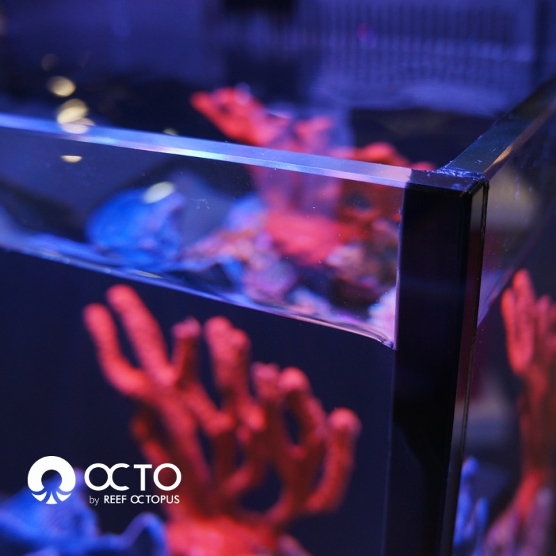 OCTO LUX 32gal Aquarium System with White Cabinet