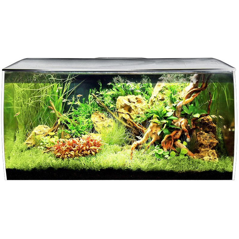 Fluval Flex 32 Gal. Aquarium Kit - White by Hagen]