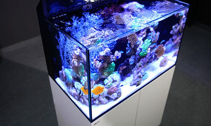 Red Sea Max E 170 Led Reef Complete System, 45 Gal. - White by Red Sea]