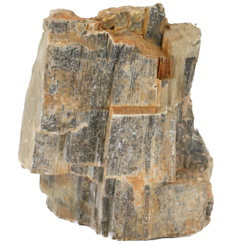 Wooden Fossil (Petrified Wood Stone) 20 lb box by AquaCave]