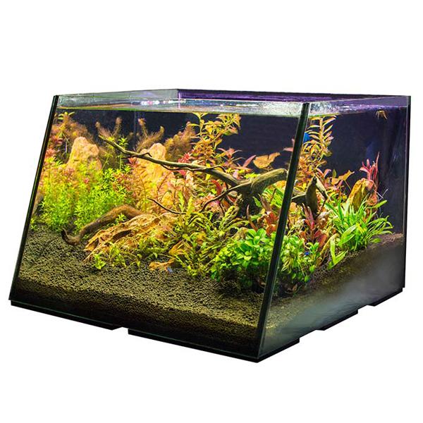 Lifegard Full View 5 Gallon Aquarium