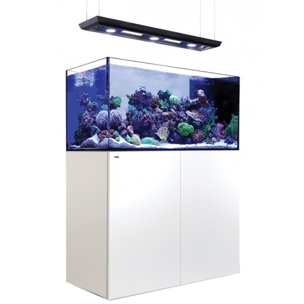 Red Sea Reefer Peninsula P500 Deluxe, 132 Gal. With 3X ReefLED 90 - White by Red Sea]