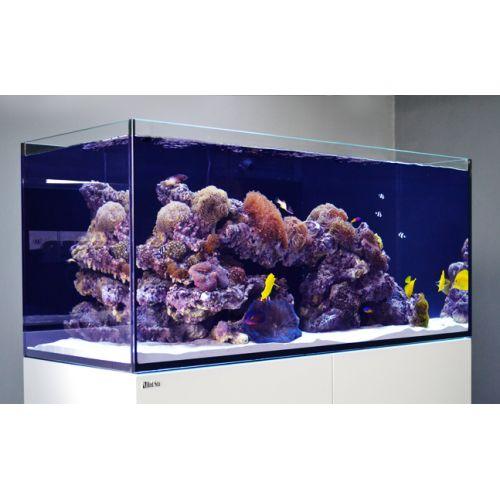 Red Sea Reefer 250, 54 Gal. Aquarium Kit, White by Red Sea]