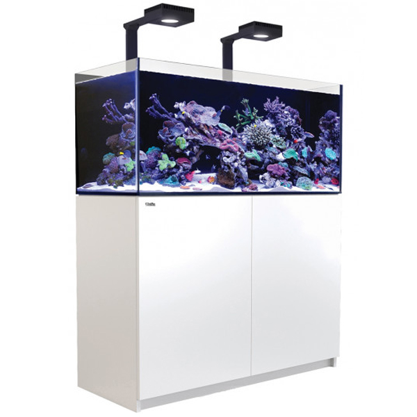 Red Sea Reefer 350 Deluxe, 91 Gal. With 2X ReefLED 90 - White by Red Sea]