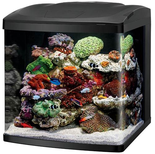Coralife BioCube LED 32 Gallon