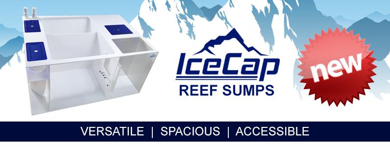 Ice Cap Reef Sumps