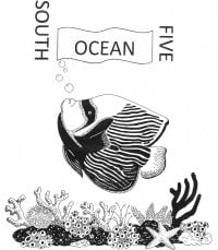 South Ocean Five