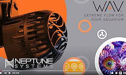 Neptune Systems WAV Powerheads