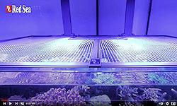 Red Sea DIY Aquarium Net Cover